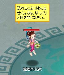 kayou01_20101010095413.jpg