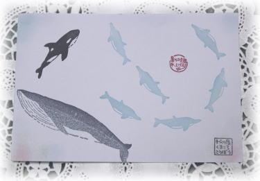 syotyu2010b.jpg