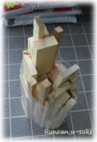 wood100509c.jpg