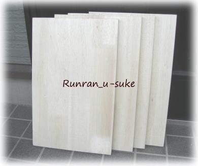 wood100509f.jpg
