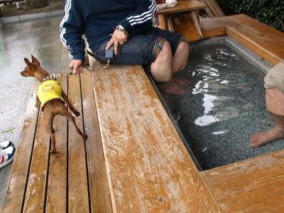 飯坂温泉の足湯(あ~しあわせの湯)