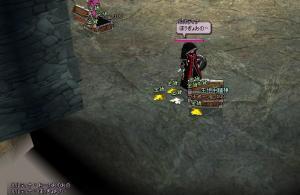 mabinogi_2008_09_12_043.jpg