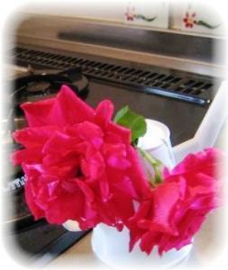 台所の薔薇