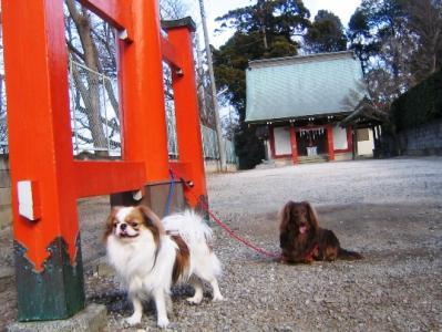 諏訪神社の鳥居の前