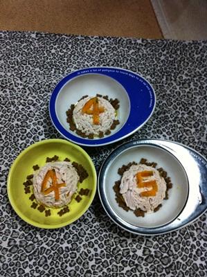 4&5sai