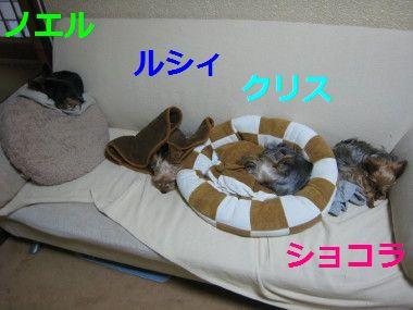 IMG_77841.jpg