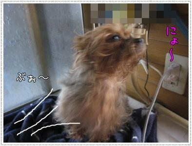 ショコ風呂5