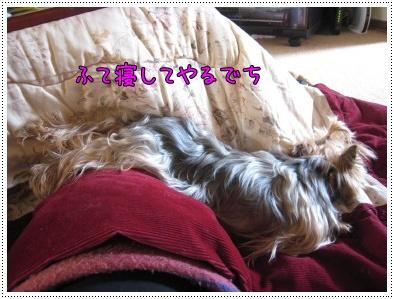 ショコ風呂7