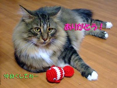 2008_0914-2.jpg