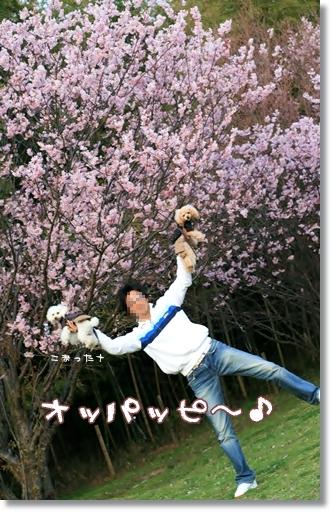 2008-03-19-017_.jpg