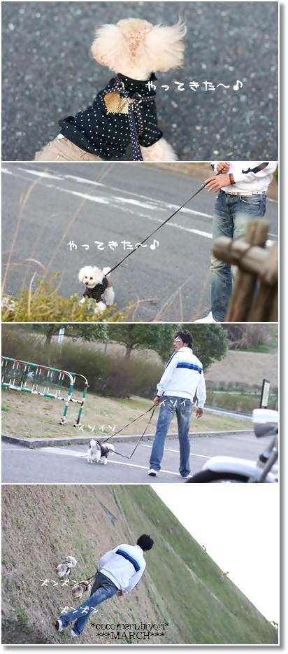 2008-03-19-01_.jpg