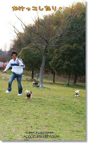 2008-03-19-11_.jpg