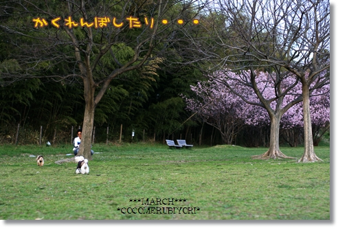 2008-03-19-13_.jpg