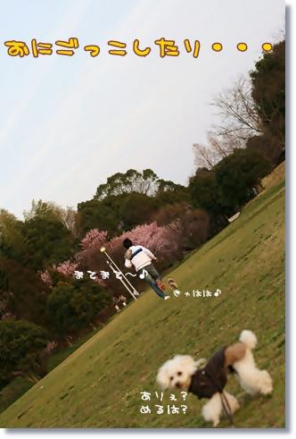 2008-03-19-14_.jpg