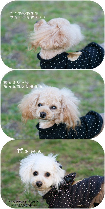 2008-03-19-15__20080319122200.jpg