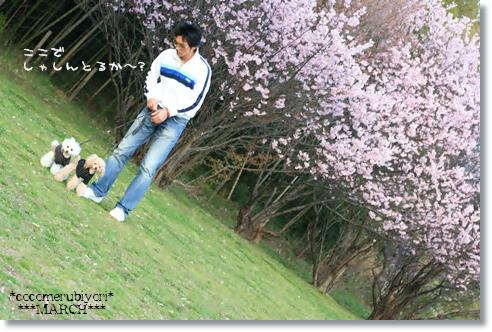2008-03-19-16_.jpg