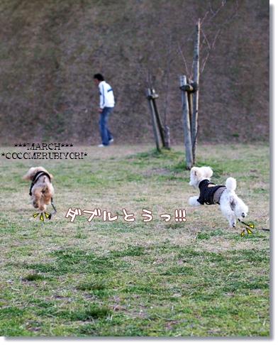 2008-03-19-3_.jpg