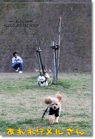 2008-03-19-4_.jpg
