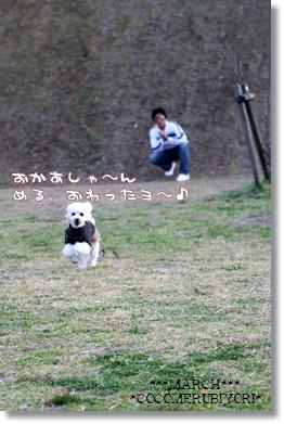 2008-03-19-5_.jpg