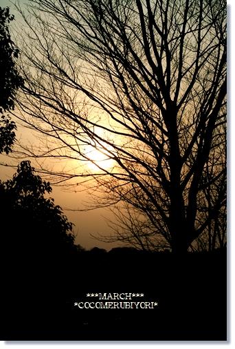 2008-03-19-6_.jpg