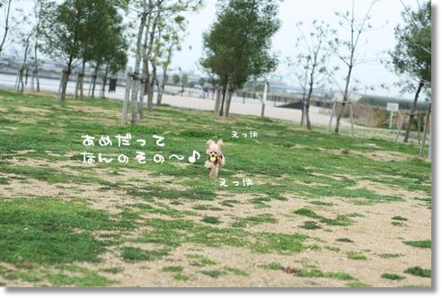 2008-03-23-004.jpg