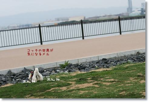 2008-03-23-006.jpg