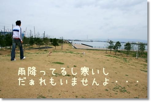 2008-03-23-014.jpg