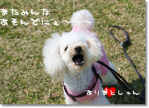 2008-04-06-22.jpg