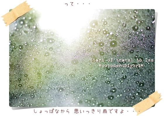 2008-04-18-01.jpg