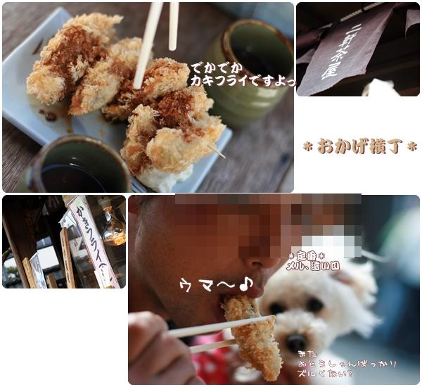 2008-04-19-10.jpg