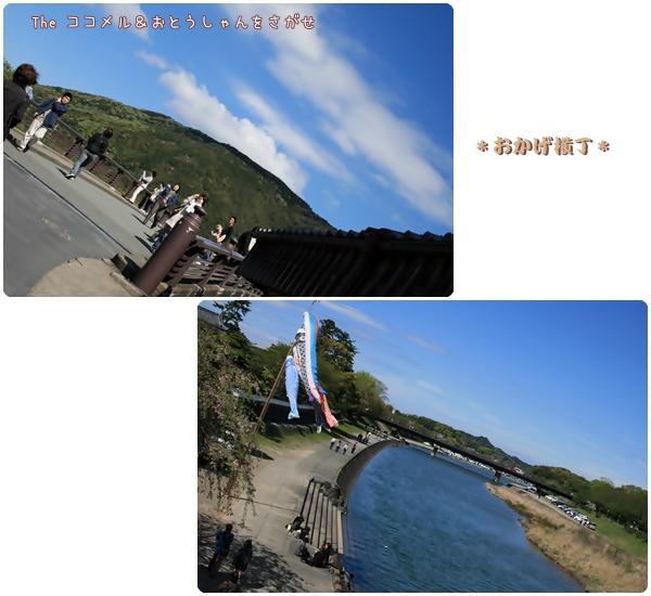 2008-04-19-13.jpg