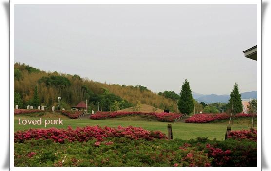 2008-05-11-5-3.jpg