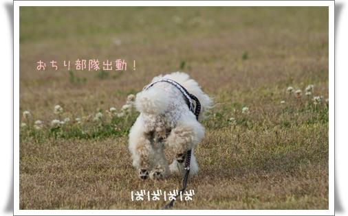 2008-05-11-6-1.jpg