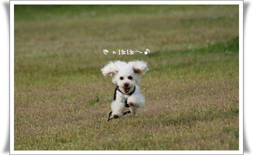 2008-05-11-7.jpg