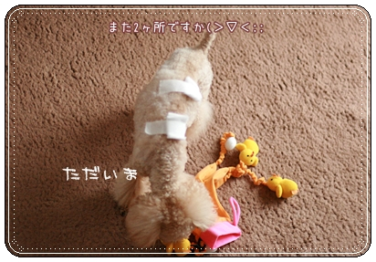 2008-06-07-3.jpg