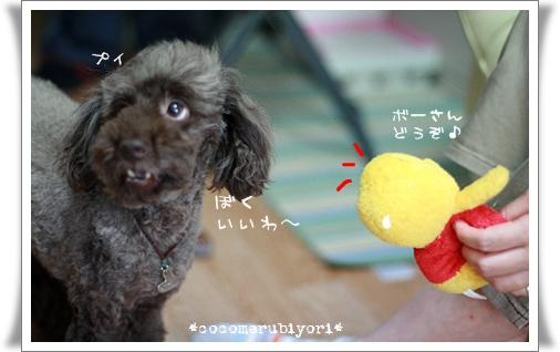 2008-06-19-01.jpg