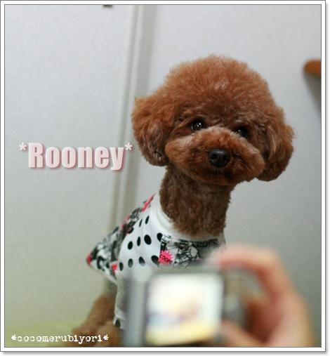 2008-07-22-rooney.jpg