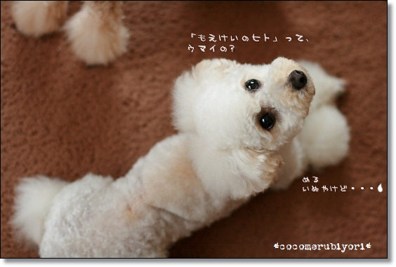 2008-07-meru-02.jpg