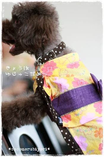 2008-08-02-yuzu-2.jpg