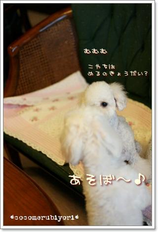 2008-08-03-05.jpg
