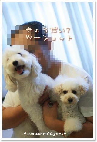 2008-08-03-06.jpg