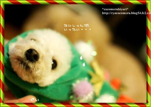 IMG_クリスマス番外10
