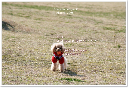 ブログ2008-03-9-001