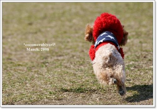 ブログ2008-03-9-003