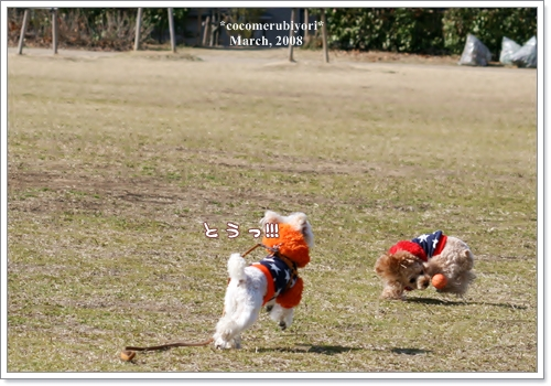 ブログ2008-03-9-10