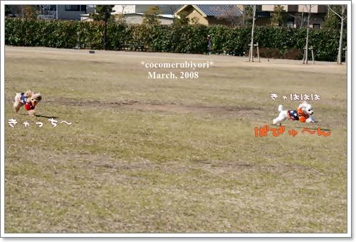 ブログ2008-03-9-11