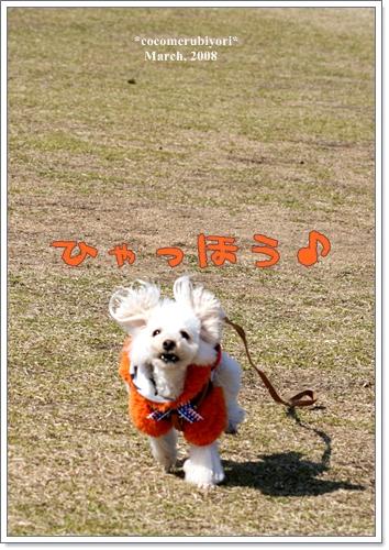 ブログ2008-03-9-12