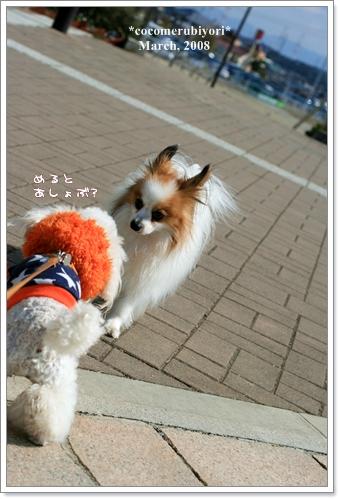 ブログ2008-03-9-18