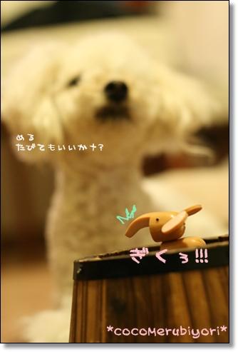 ブログ リアル2008-03-10-03