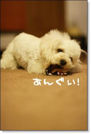 ブログ リアル2008-03-10-09